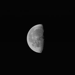 CANON Canon EOS Kiss Digital Xで撮影した風景(2月28日「朝」の月)の写真(画像)