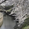 CANON Canon EOS Kiss X2で撮影した風景(善福寺川緑地)の写真(画像)