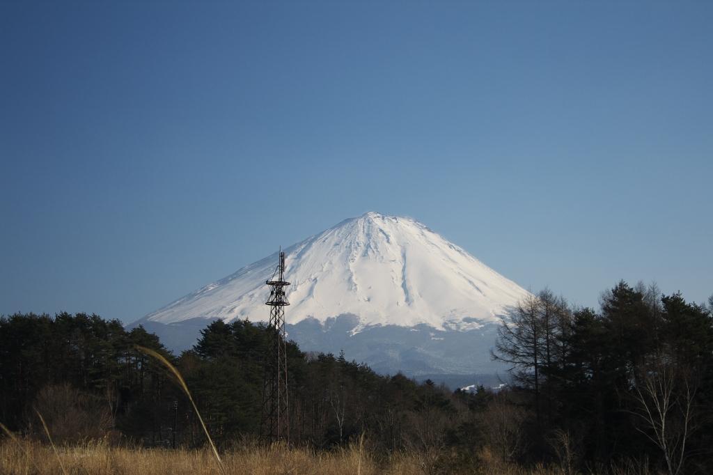 鳴沢から見た富士