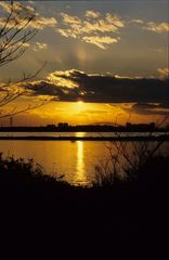 葛西臨海公園の夕日