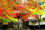 200711横蔵寺(ご参考)