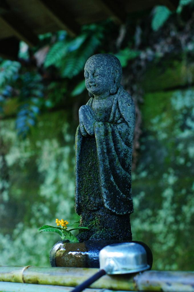 祈る(鎌倉安国論寺)