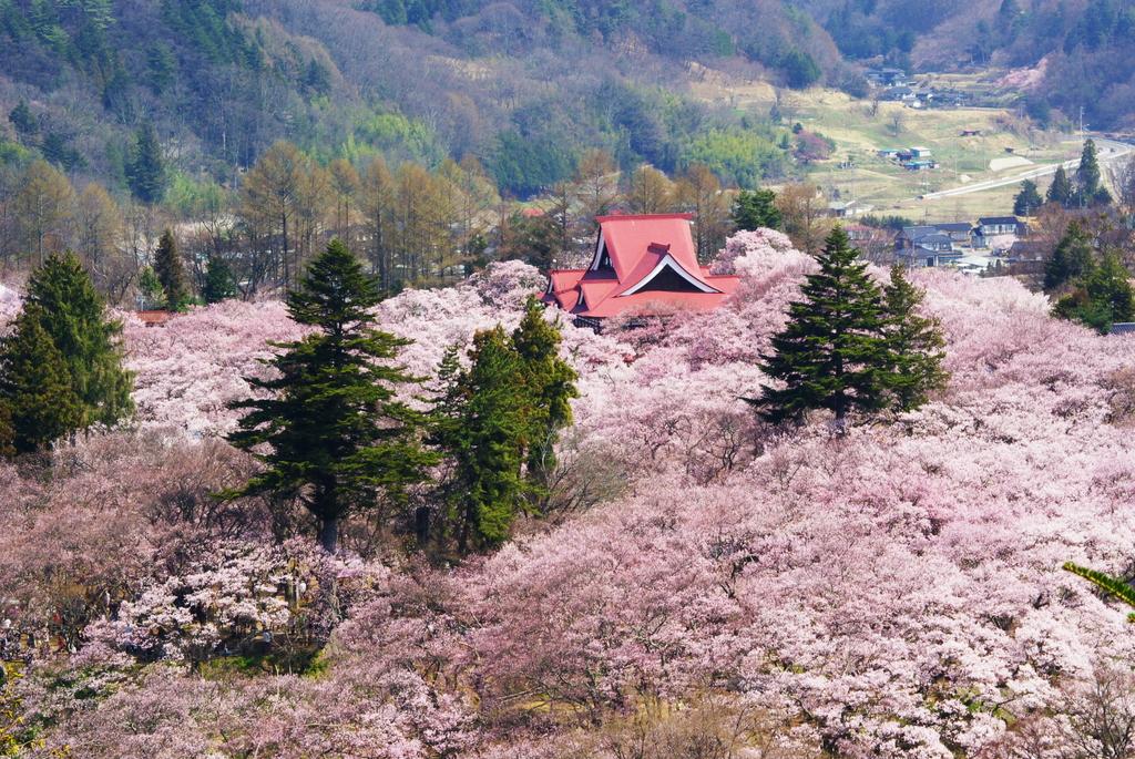 高遠白山観音から(2007/4-8)