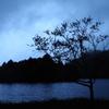 梅雨入りの湖畔