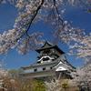 犬山城にて(2007/4)