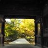 九品仏の秋