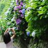 PENTAX PENTAX K20Dで撮影した人物(カメラ女子 AT 成就院 鎌倉紫陽花開花情報)の写真(画像)
