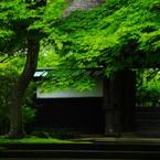 PENTAX PENTAX K20Dで撮影した建物(修行者の 読経の声あり 円覚寺)の写真(画像)