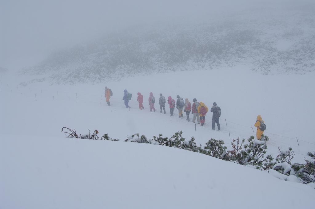 2008秋・雪だ