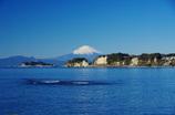 富士さやか 帆の花恋し 和賀江島(2010年版卓上カレンダー表紙)