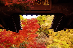 201011永観堂遊心門