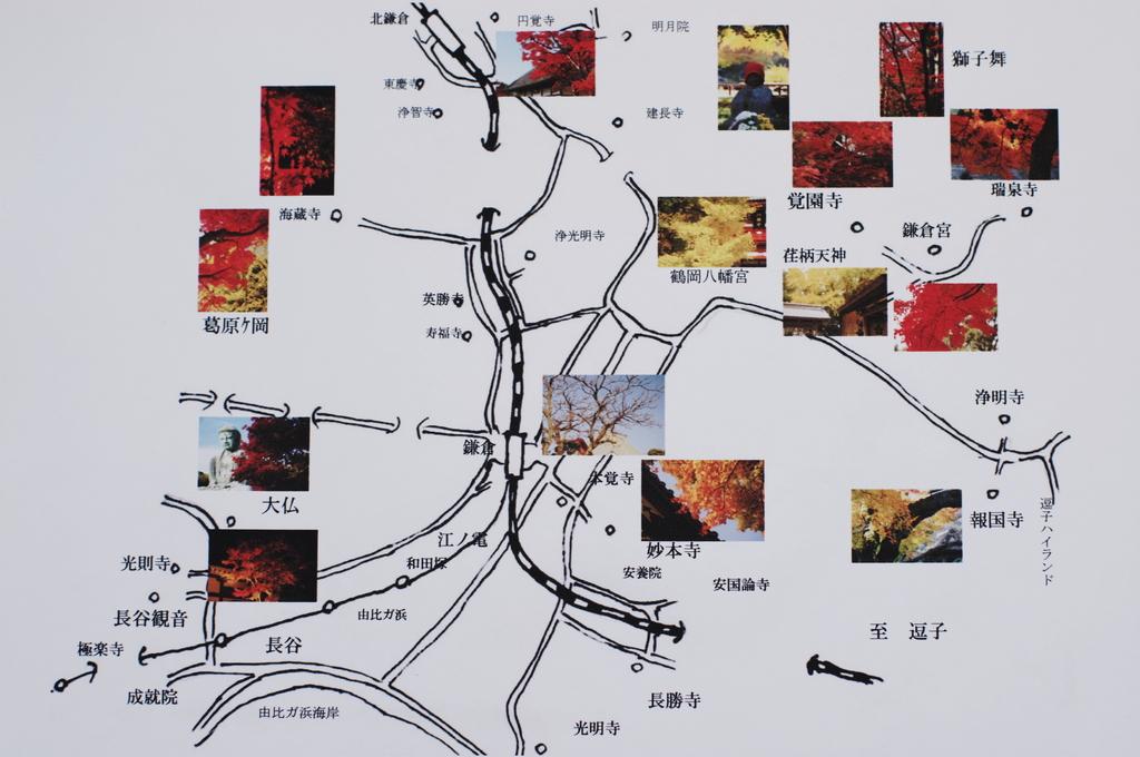 鎌倉紅葉地図(ご参考:皆様に感謝をこめて)