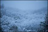 2011香川雪景色