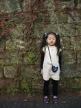 幼稚園の石垣