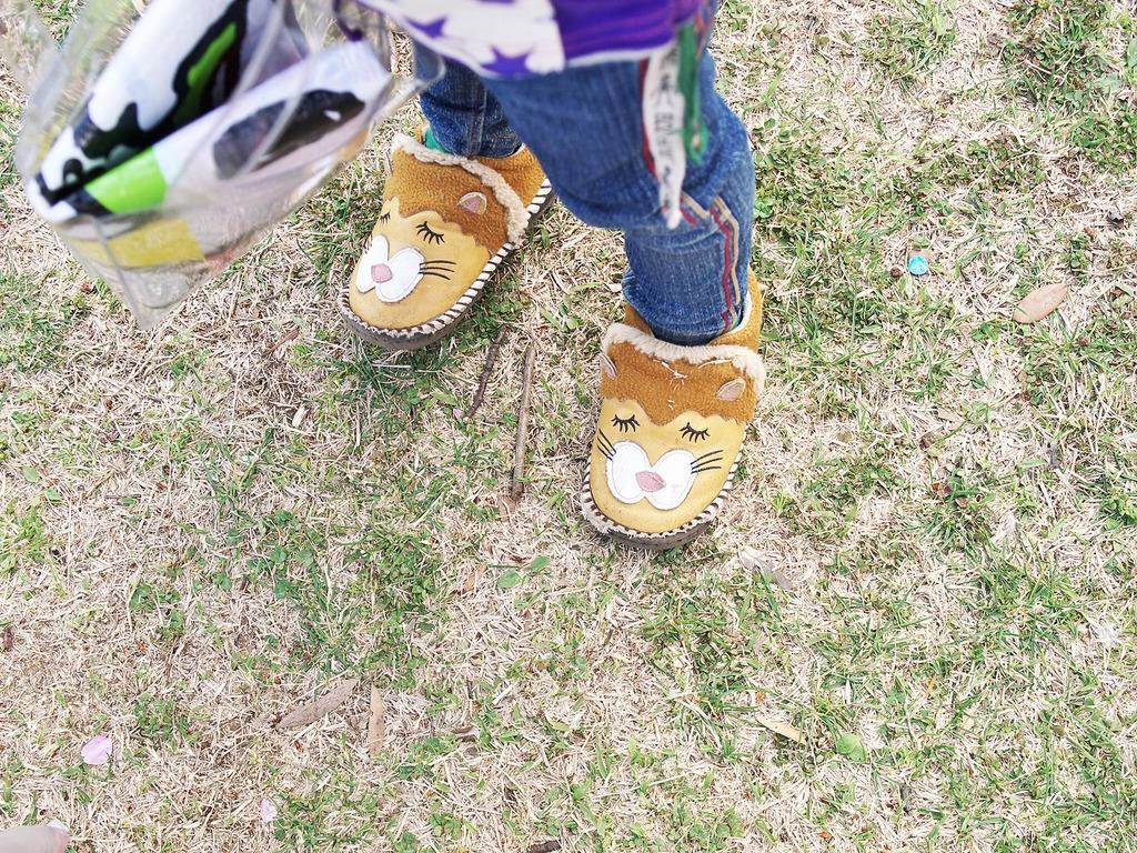 ライオンの靴って