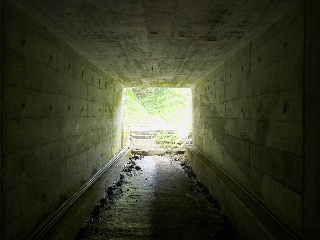 南伊豆トンネルを抜けると