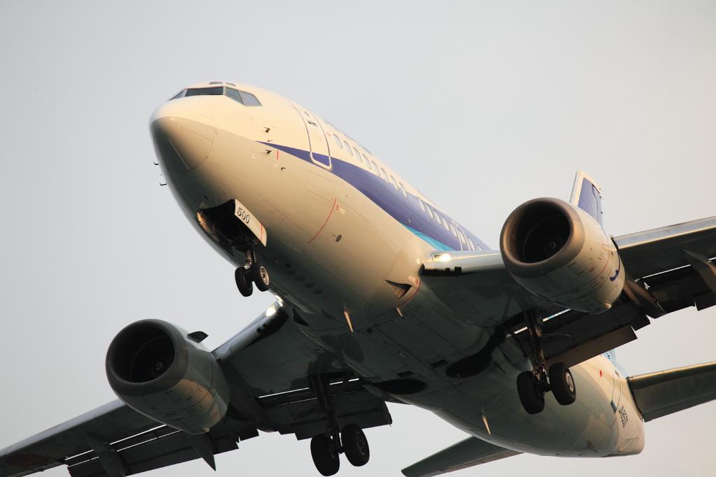 ANA B-737