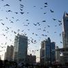 2002年上海人民広場