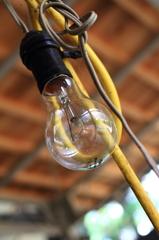 Naked Light Bulb