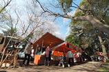 桜の下の縁日