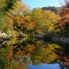 紅葉の嵐山渓谷