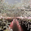 雨の目黒川