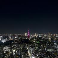 OLYMPUS E-3で撮影した風景(NIGHT VIEW OF TOKYO)の写真(画像)