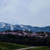 Spring of Furano