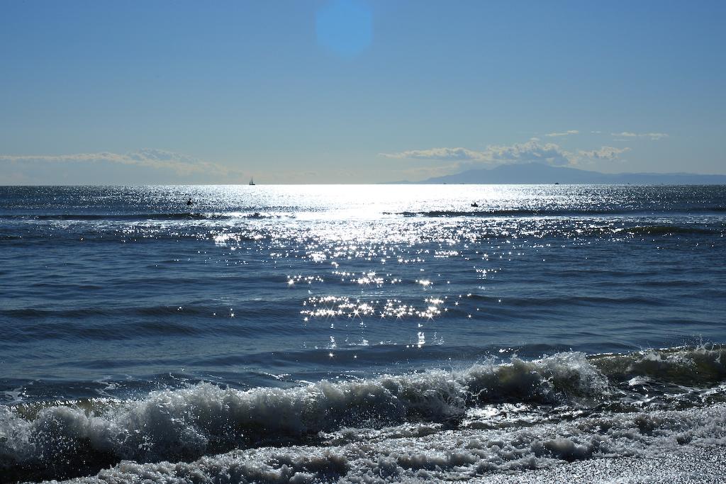 Sea of the winter
