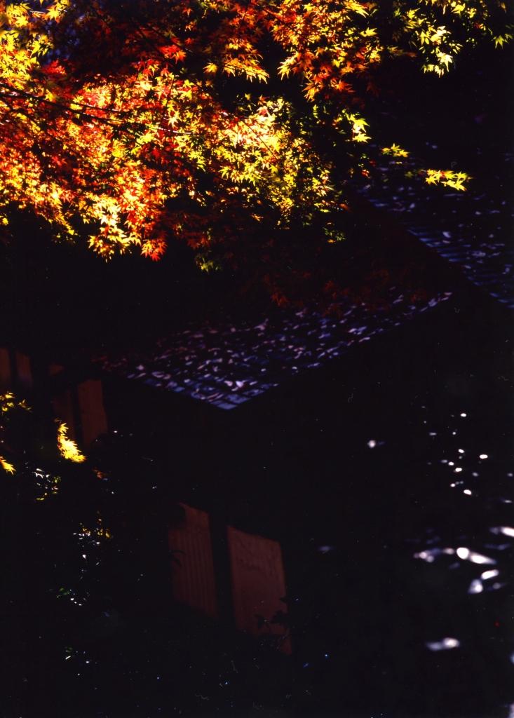 645_higashiyama_2007_12_01_005