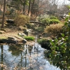 公園 2007