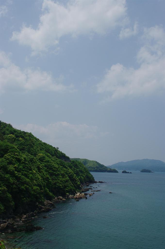 新緑と海と青空