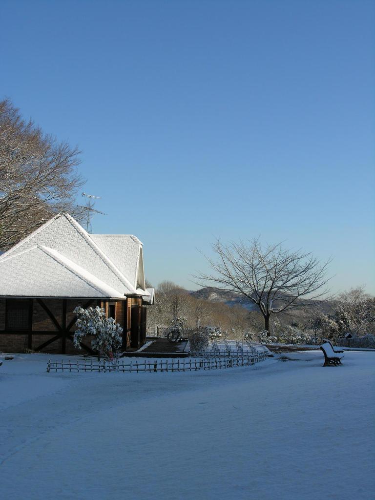 N0869 雪
