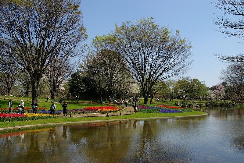 P6271昭和記念公園