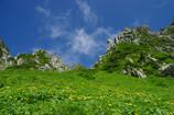 P2050雲上のお花畑