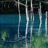 PENTAX PENTAX K20Dで撮影した風景(bb4)の写真(画像)
