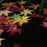 PENTAX PENTAX K20Dで撮影した風景(c25)の写真(画像)