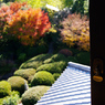 PENTAX PENTAX K20Dで撮影した風景(af6sa)の写真(画像)
