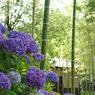 PENTAX PENTAX K10Dで撮影した風景(b14)の写真(画像)