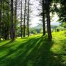 PENTAX PENTAX K20Dで撮影した風景(aww8)の写真(画像)