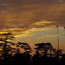 PENTAX PENTAX K20Dで撮影した風景(a5)の写真(画像)