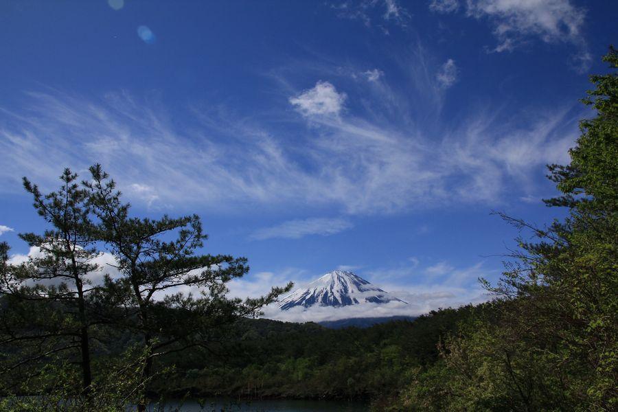 西湖からの富士