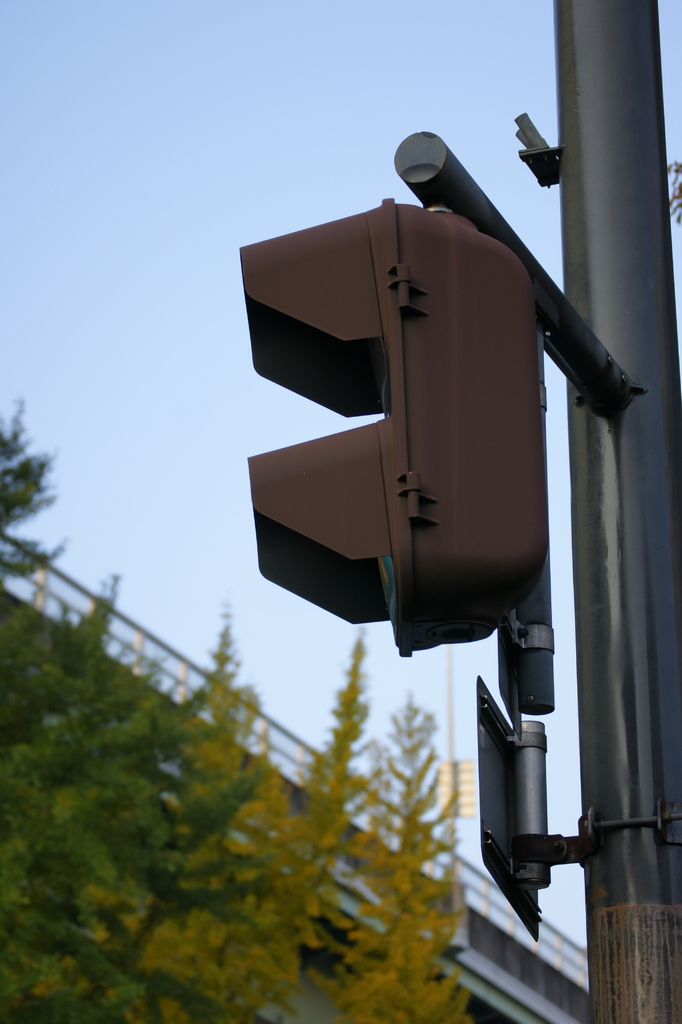 信号と街路樹