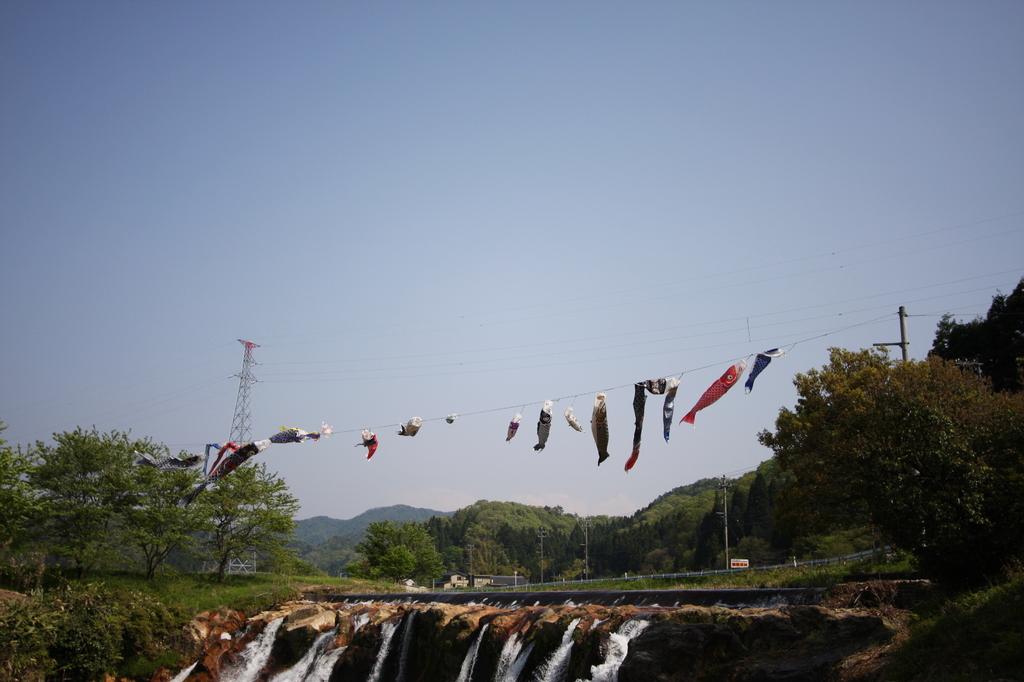 滝と鯉のぼり