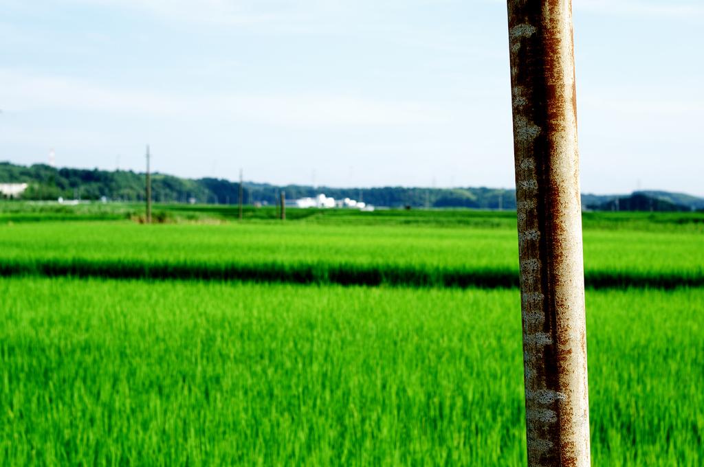 緑と空と鉄