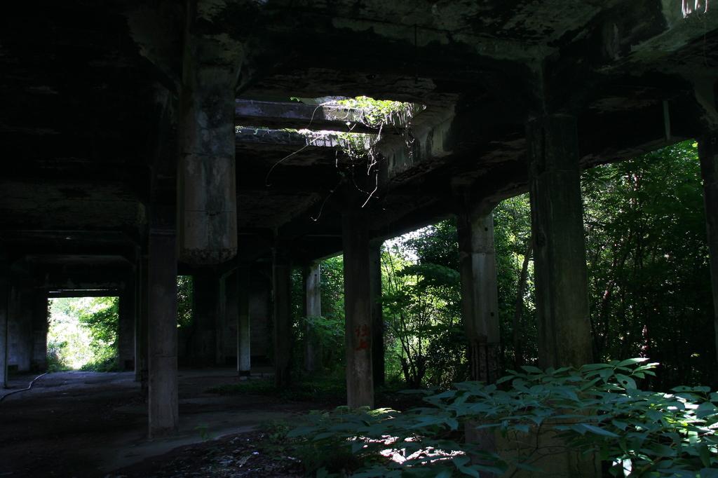 廃墟入り口付近
