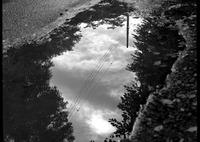HASSELBLAD 500C/Mで撮影した風景(水たまりの空)の写真(画像)