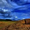 「農」のある風景