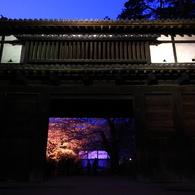 CANON Canon EOS 40Dで撮影した風景(桜門)の写真(画像)