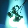 CANON Canon EOS 40Dで撮影した植物(Blue Night )の写真(画像)